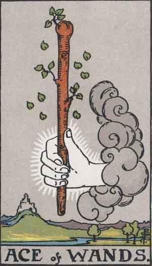 タロット・ワンドエース|カードの意味と解説