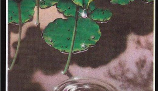 禅タロット【手放し】カードの意味と解説